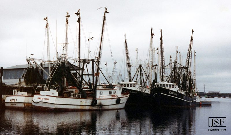 Fishing boats docked in a harbor.